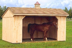 10 x 16 Run In Shed with Optional Cupola